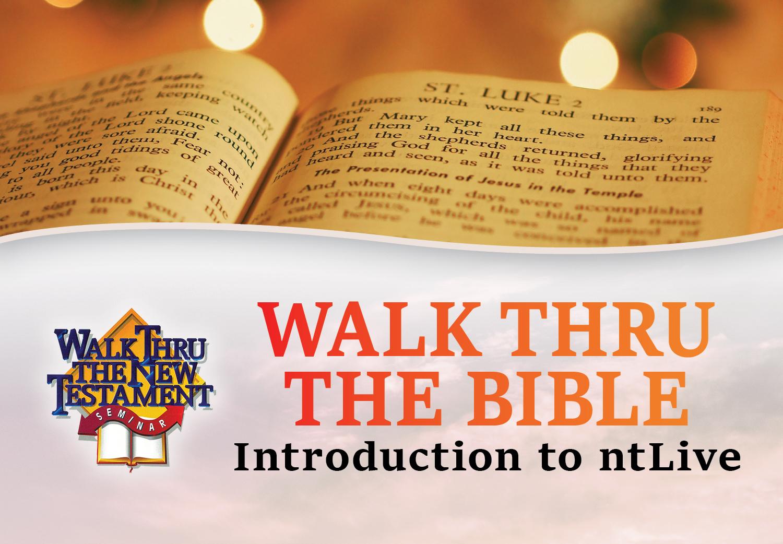 WTTB New Testament 2019