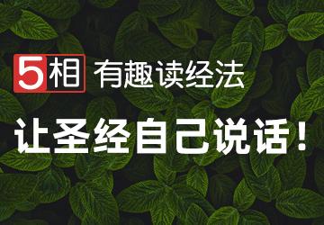 """""""5相""""有趣读经法<br/>(基础班)"""