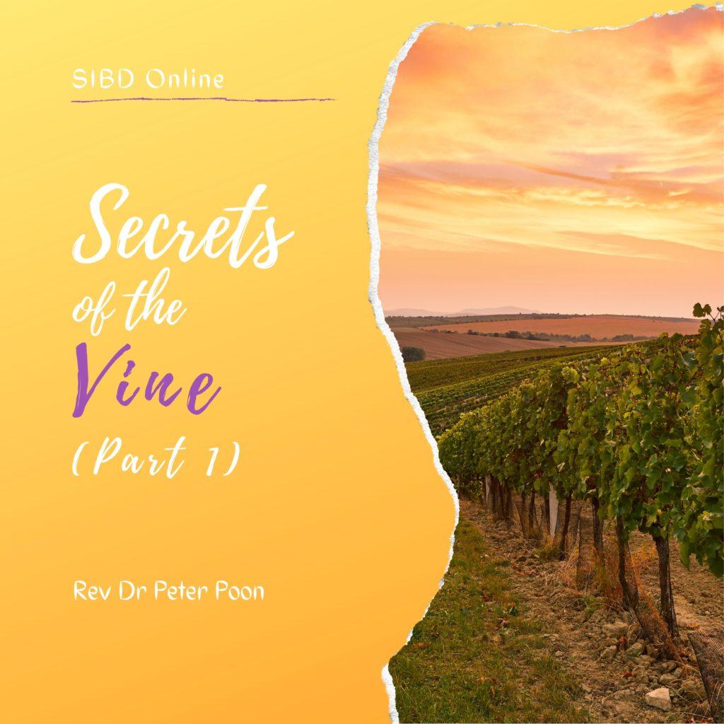 Secrets of The Vine Part 1